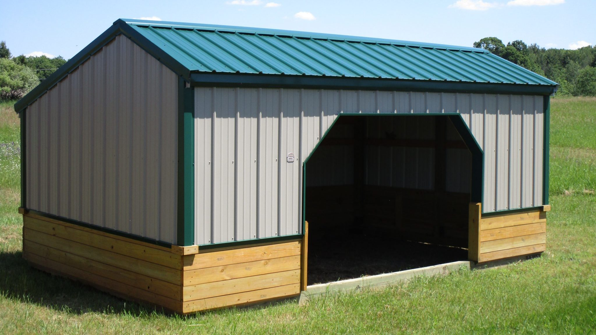 animal shelter amish buildings michigan